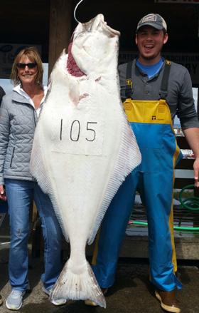 Westport Charters Salmon Tuna Halibut And
